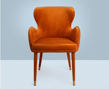 Ainsley Armchair to Complete Home Furniture