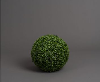 Green Buxus Ball Ideal for House Decoration