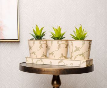 Elegant Cream Pot Planter Set for House Decoration