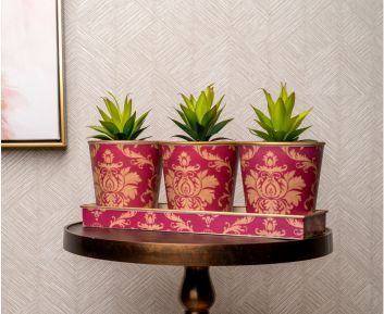 Red Pot Planter Set for House Decoration