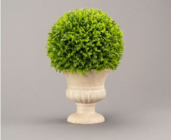 Green Oregano Topiary with Pot for Home Decor